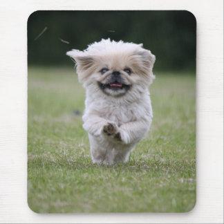 Tapis De Souris Mousepad mignon de photo de chien de Pekingese