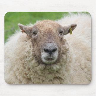 Tapis De Souris Moutons de mère