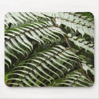 Tapis De Souris Nature vert-foncé des frondes II de fougère
