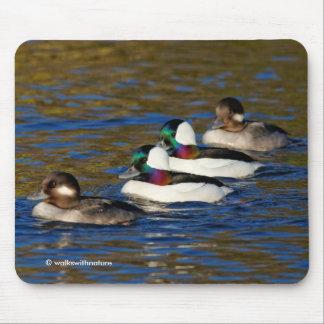 Tapis De Souris Obtention de mes canards dans une rangée : Quatre