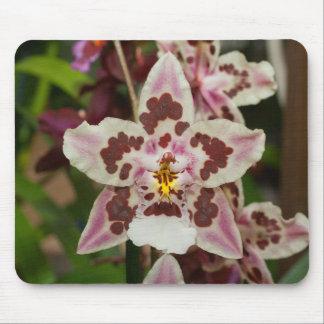 Tapis De Souris Orchidée multicolore impressionnante de