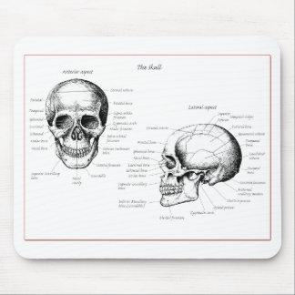 Tapis De Souris Os du crâne humain