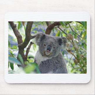Tapis De Souris Ours de koala dans un arbre