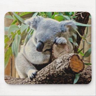 Tapis De Souris Ours de koala de sommeil