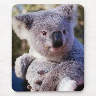 Tapis De Souris Ours de koala tenant un ours de koala