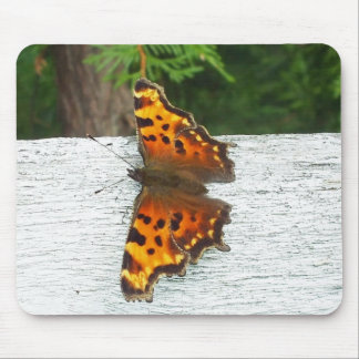 Tapis De Souris Papillon de monarque sur la barrière blanche