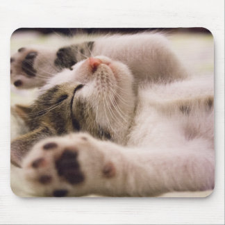 Tapis De Souris Pattes somnolentes du chaton | étirées