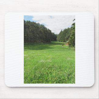 Tapis De Souris Paysage alpin avec le pré vert