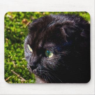 Tapis De Souris Petit chat noir mignon