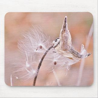 Tapis De Souris Photo de cosses de Milkweed