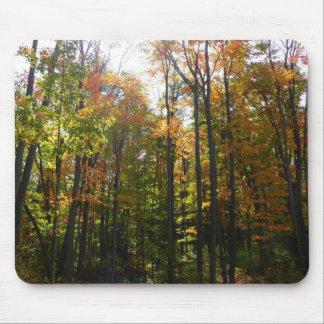 Tapis De Souris Photographie ensoleillée de paysage d'automne de