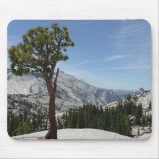 Tapis De Souris Point I d'Olmsted au parc national de Yosemite