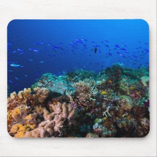 Tapis De Souris Poissons tropicaux et récif coralien Mousepad