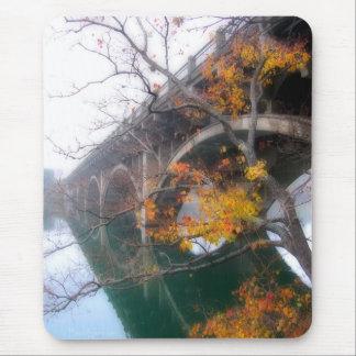 Tapis De Souris Pont de lac ladybird dans l'automne - Austin le