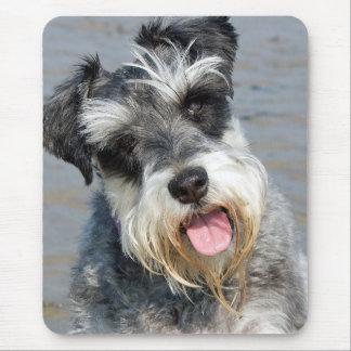 Tapis De Souris Portrait mignon de photo de chien miniature de