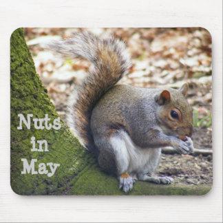 Tapis De Souris Protection d'écureuil d'écrous en mai