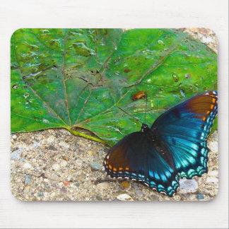 Tapis De Souris Repos de papillon sur la feuille