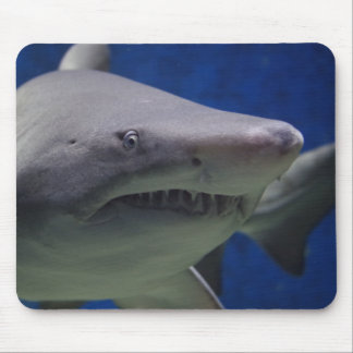 Tapis De Souris Requin
