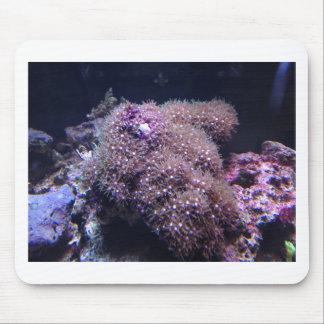 Tapis De Souris Roches vivantes d'eau de mer