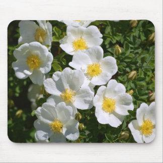 Tapis De Souris Roses sauvages blancs