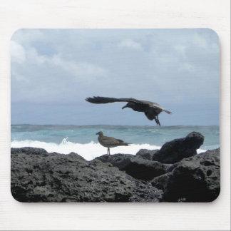 Tapis De Souris seagulls, ocean and rocks
