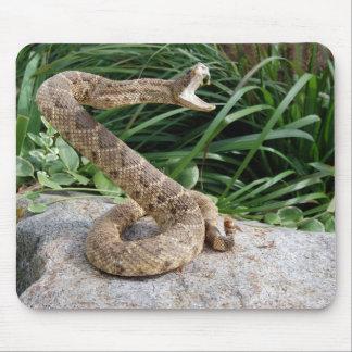Tapis De Souris serpent de hochet sur une roche