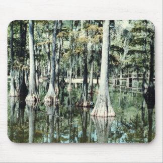 Tapis De Souris Terres humides de la Louisiane