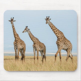 Tapis De Souris Troupeau de girafe dans la prairie
