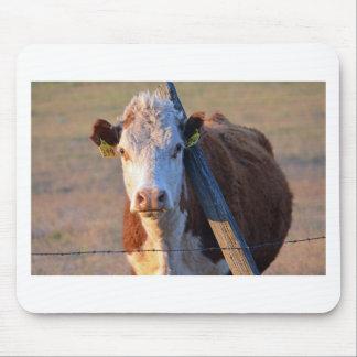Tapis De Souris Une vache et son courrier