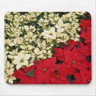 Tapis De Souris Vacances blanches et rouges des poinsettias I