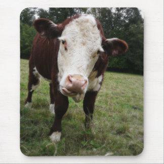 Tapis De Souris Vache collant la langue