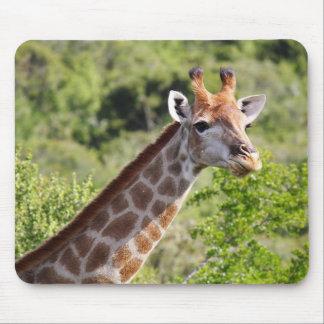 Tapis De Souris Visage et cou adultes de girafe