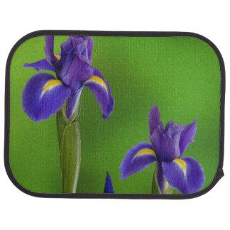 Tapis De Voiture Fleurs d'iris