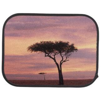 Tapis De Voiture Image de silhouette d'arbre d'acacia au lever de
