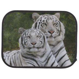 Tapis De Voiture Phase blanche, tigre de Bengale, Tigre