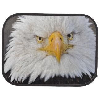 Tapis De Voiture Portrait d'Eagle chauve, Eagle chauve en vol,