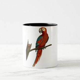 Tasse 2 Couleurs Aspiration rouge de perroquet