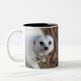 Tasse 2 Couleurs Fourrure blanche Meerkat de neige,