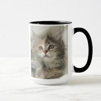 Tasse bleue de chaton de Tortie