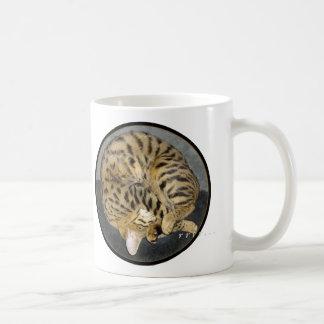 Tasse confortable de chat de la savane