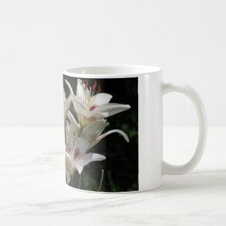 tasse de café avec les lis blancs