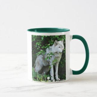 Tasse de café de loup gris