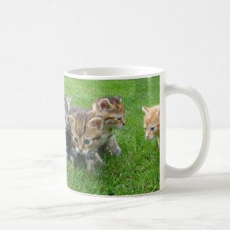 Tasse de café innocente mignonne de chatons