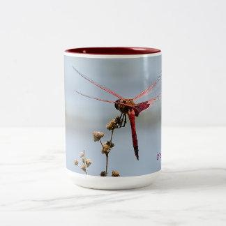 Tasse de café rouge de libellule