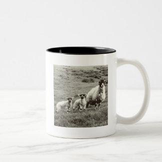 Tasse de portrait de famille de moutons