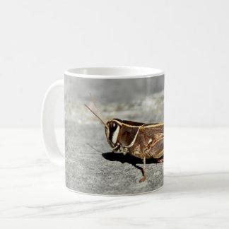 Tasse Deux-Rayée d'insecte de sauterelle