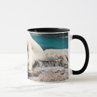 Tasse d'ours blanc