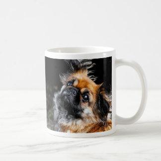 Tasse mignonne de photo de chien de Pekingese