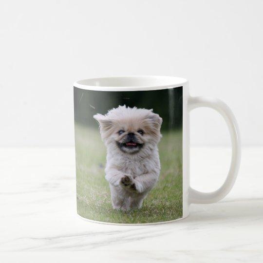 Tasse mignonne de photo de chien de pekingese zazzle for Maison classique emporium