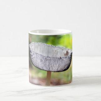 Tasse plissée de champignon d'Inkcap